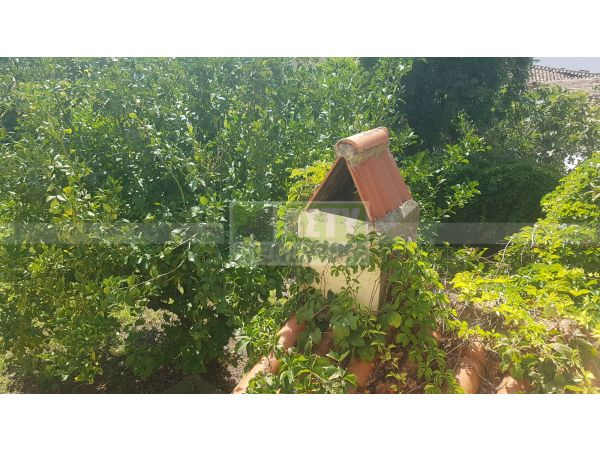 For Sale - ARCHANES